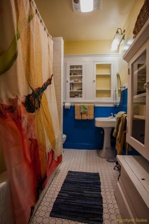 Dragonfly Bathroom