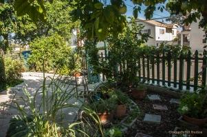 Garden in front yard