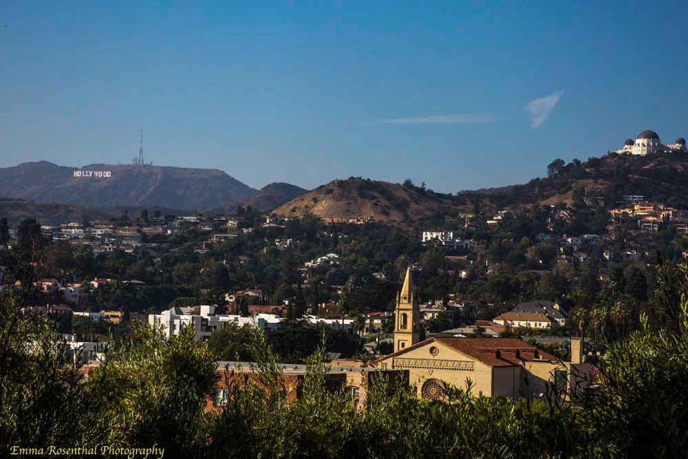 Hollywood Sign & Griffith Observatory from Barnsdale Art Park: Image of the Hollywood Hills and Hollywood, from Barnsdale Art Park.