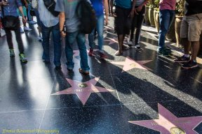 Hollywood Walk of Fame: sidewalk shot of the walk of fame, with stars and tourists.